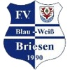 FV Blau-Weiß 90 Briesen/Mark